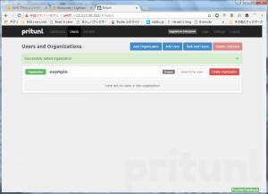 Pritunl setup organization example
