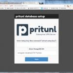 VPN Server Pritunlの設定